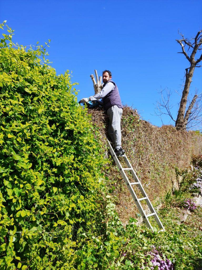 Apuntalar el hogar y su jardín siempre es una buena opción en este período