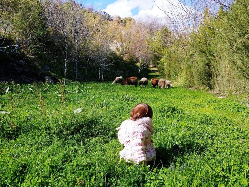 Disfrutar de la naturaleza con los pequeños es un privilegio